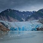 South Sawyer Glacier, Tracey Arm, Alaska by Matthew Elliott