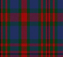 01919 Carnegie #3 Clan/Family Tartan Fabric Print Iphone Case by Detnecs2013