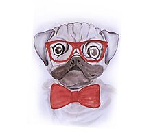 Cute funny watercolor pug with red glasses and bow hand paint Photographic Print