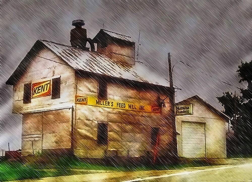 Rain Along a Country Road by Nadya Johnson