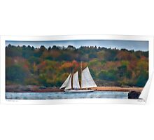 Sailing the Shoreline Poster