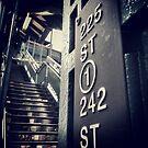 225th Street, N.Y.C by Noemad