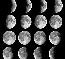 phases of moon by shoshgoodman