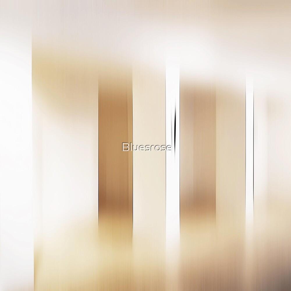 White gallery by Bluesrose