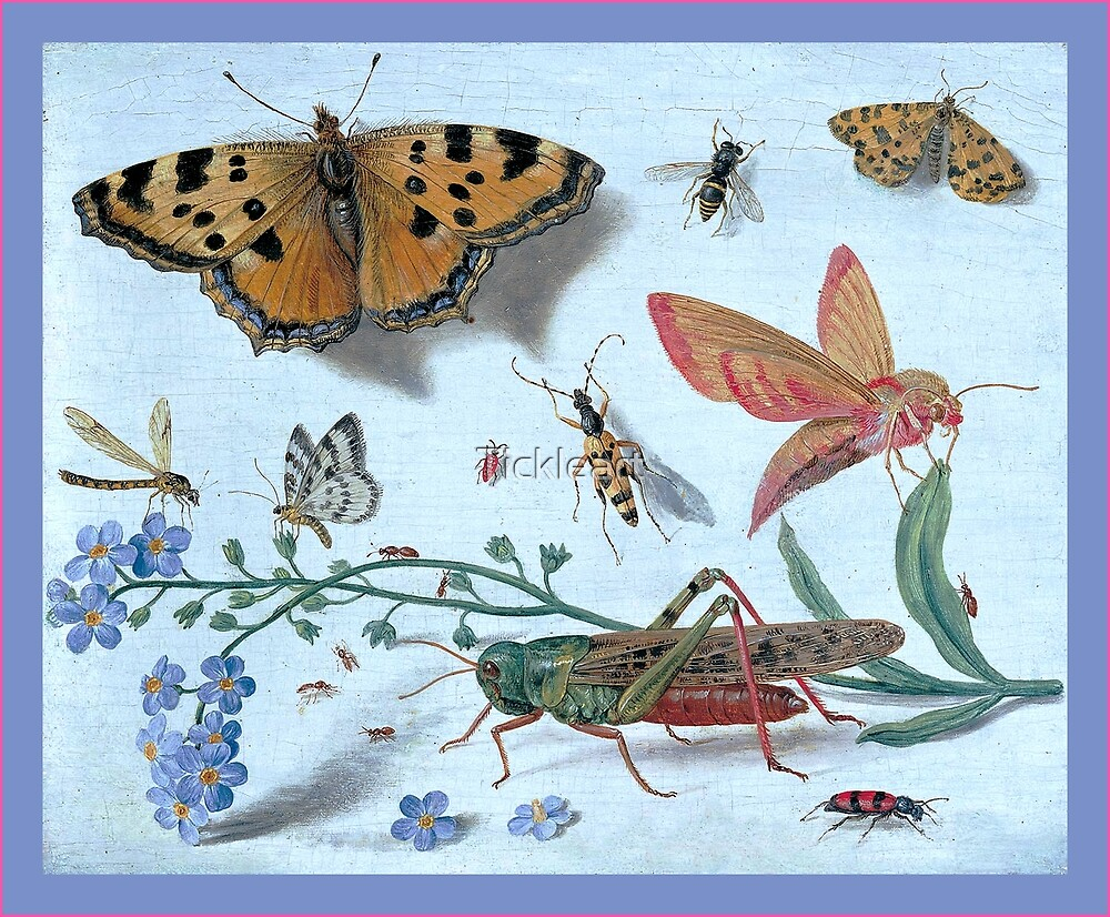 Illustration Of Insects by Tickleart