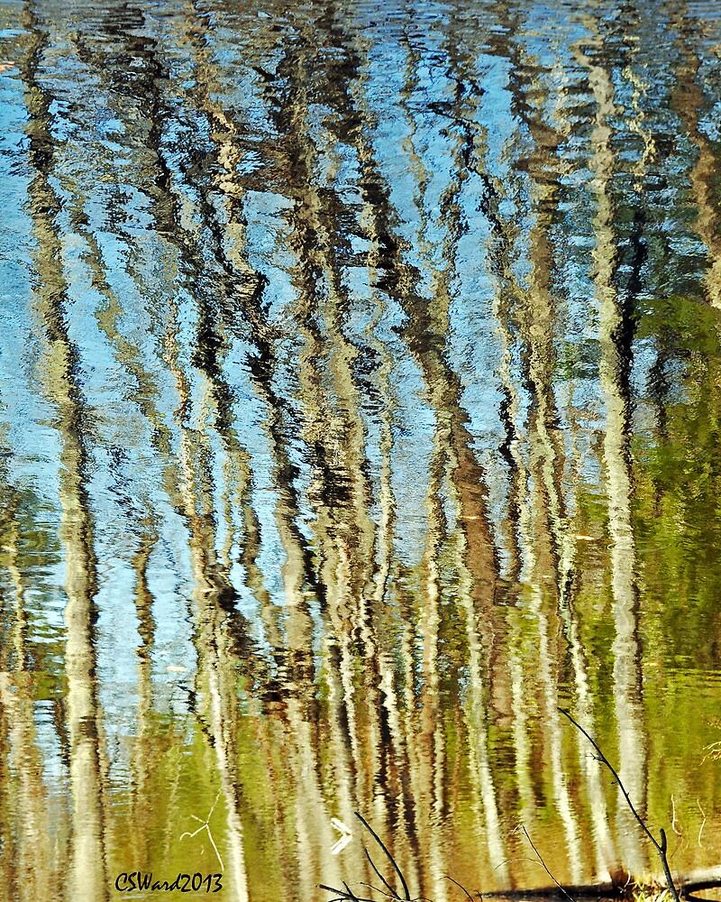 Reflecting on Monet . . .  by Caleb Ward