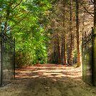 Gateway to Paradise by Steve Randall