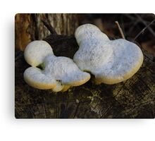 The Mickey Mouse 'Shroom Canvas Print