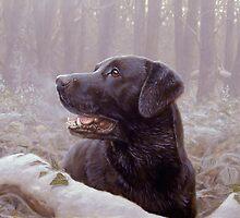 Frozen breath by John Silver