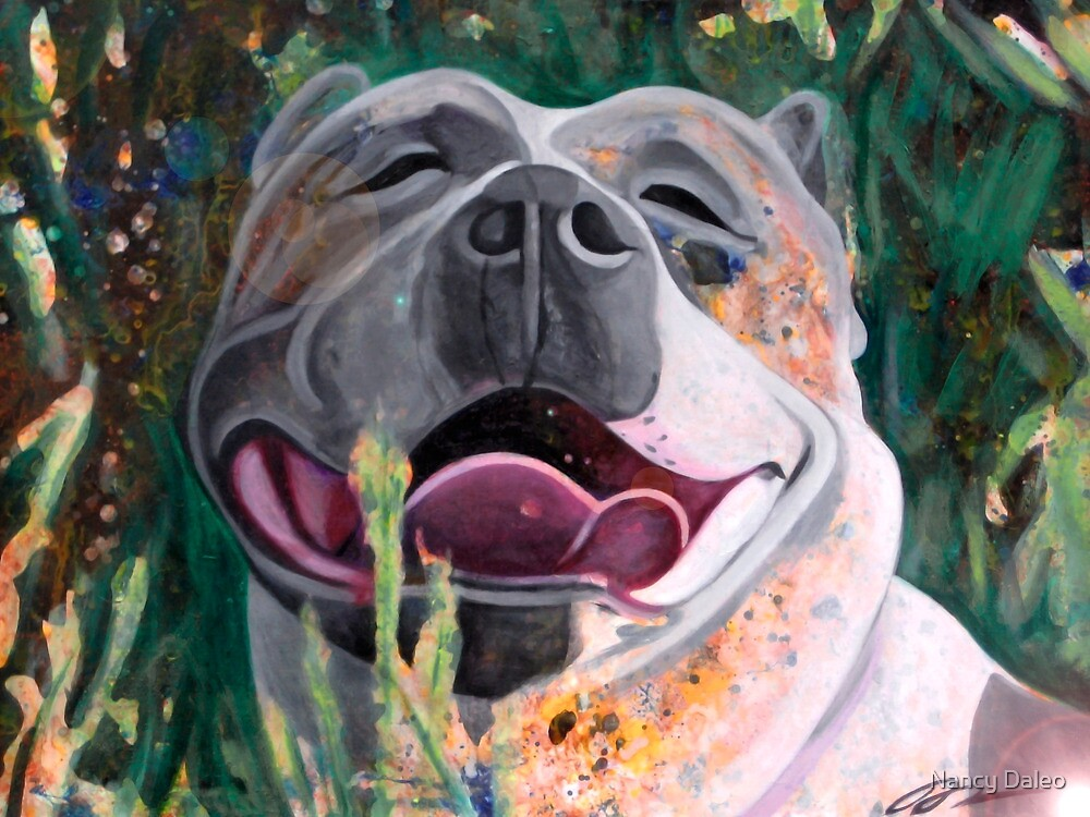 La Joie De Vivre Pit bull Enjoying Life by Nancy Daleo