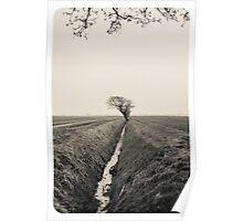 B&W Landscape Triptych III Poster