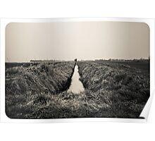 B&W Landscape Triptych II Poster