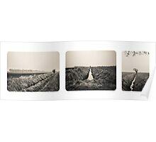 B&W Landscape Triptych Poster