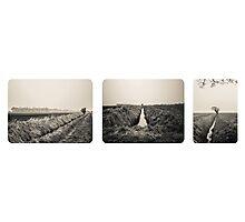 B&W Landscape Triptych Photographic Print