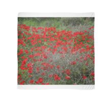 Beautiful Red Wild Anemone Flowers In A Spring Field  Scarf