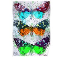 Colourful Butterflies Poster