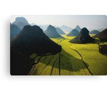 Grasslands With Mountains  Canvas Print