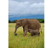 Baby Elephant - Masai Mara - kenya Photographic Print