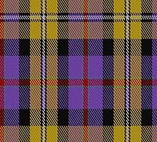 01935 Casey Tartan Fabric Print Iphone Case by Detnecs2013