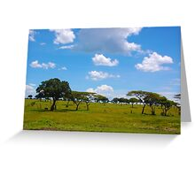 Masai Mara 3 - Kenya Greeting Card