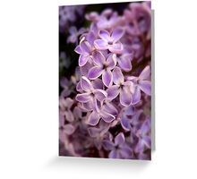 With Loving Memories Greeting Card