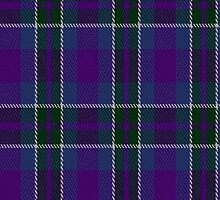 01946 Cathro Tartan Fabric Print Iphone Case by Detnecs2013