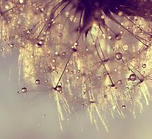 sparkles of gold by Ingz