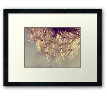 sparkles of gold Framed Print