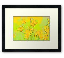 Daffodil Garden Framed Print