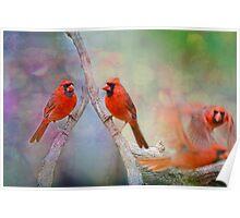 Redbird Fantasy Poster