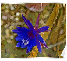 Blue Epiphyllum in Sand Poster