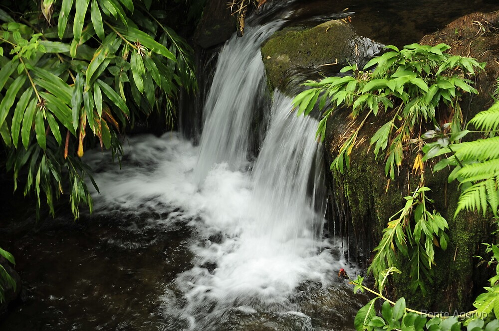 Small waterfall  by julie08