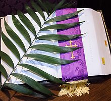 Palm Sunday by Cathy Donohoue