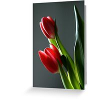 Tulip Power Greeting Card