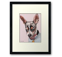 Chihuahua Portrait Framed Print