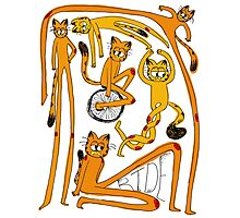 The Long Garf Photographic Print