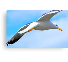 Birdy in the Sky Canvas Print