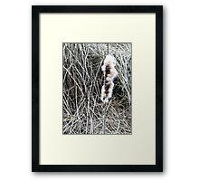 Edmonds Marsh Framed Print