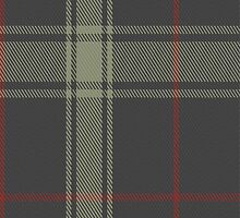 01958 Ceredigion Tartan Fabric Print Iphone Case by Detnecs2013