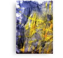 negative reaction... lost cause Canvas Print