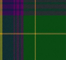 01974 Children 1st Tartan Fabric Print Iphone Case by Detnecs2013
