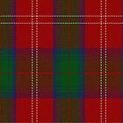 01979 Chisholm Clan/Family Tartan Fabric Print Iphone Case by Detnecs2013