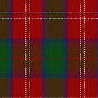 01979 Chisholm Clan/Family Tartan Fabric Print Iphone Case by Detnecs2013