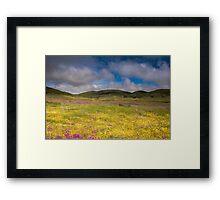 Pastoral Pastel Framed Print