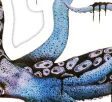 Giant Inky Squid Sticker
