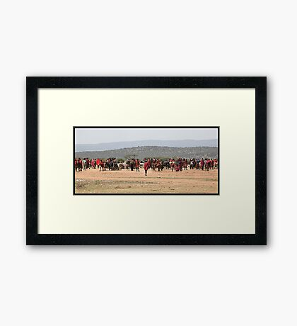 Masai Cattle market Framed Print