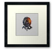 battlefield death pilot Framed Print