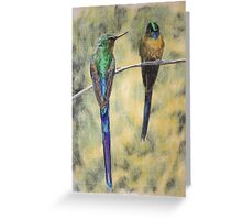violet tailed sylphs Greeting Card