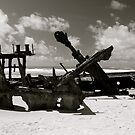 Wreck of the SS Mahino by pictureit
