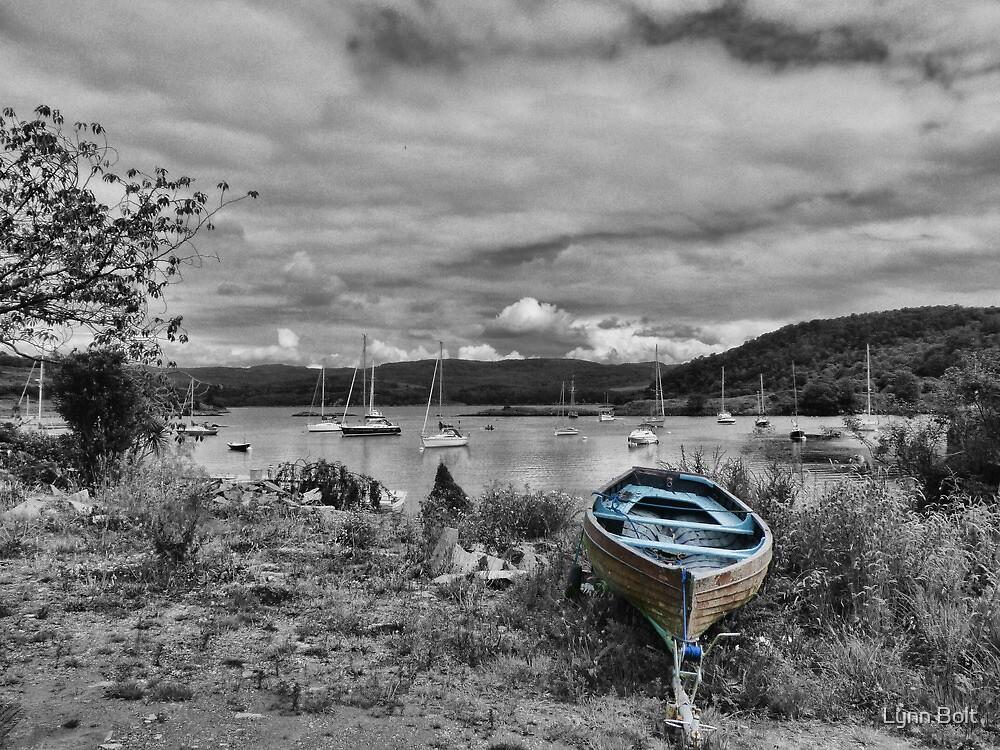 Blue Boat by Lynn Bolt